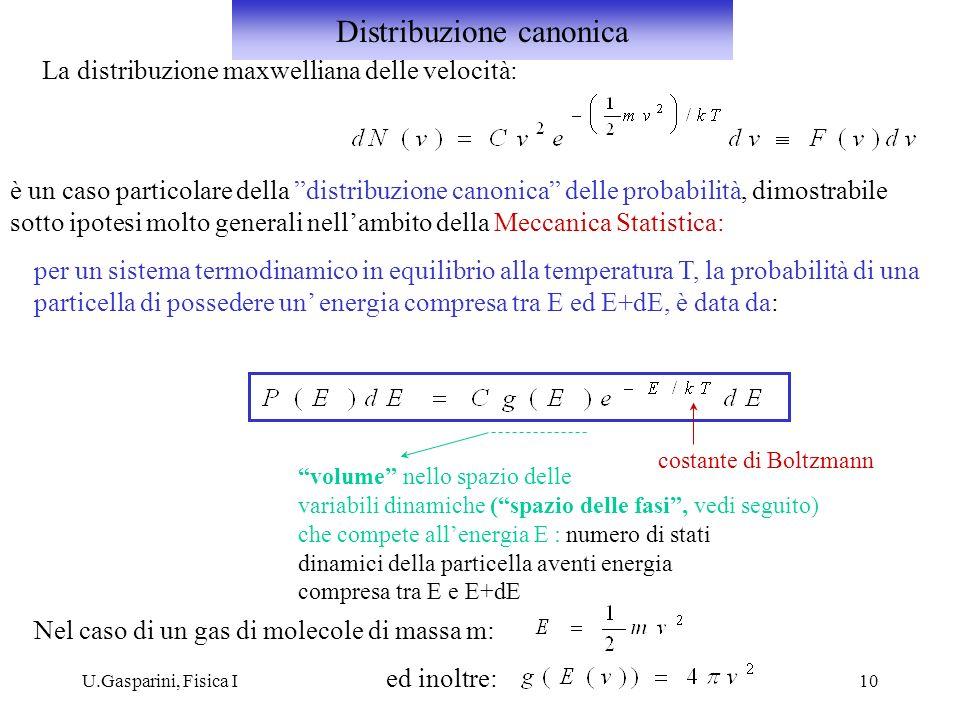 U.Gasparini, Fisica I10 La distribuzione maxwelliana delle velocità: è un caso particolare della distribuzione canonica delle probabilità, dimostrabil