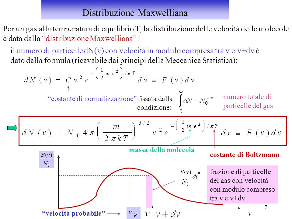 7 Per un gas alla temperatura di equilibrio T, la distribuzione delle velocità delle molecole è data dalla distribuzione Maxwelliana : il numero di pa