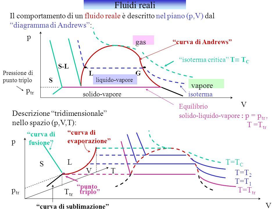 Il comportamento di un fluido reale è descritto nel piano (p,V) dal diagramma di Andrews: LG isoterma isoterma critica T T C gas vapore liquido-vapore