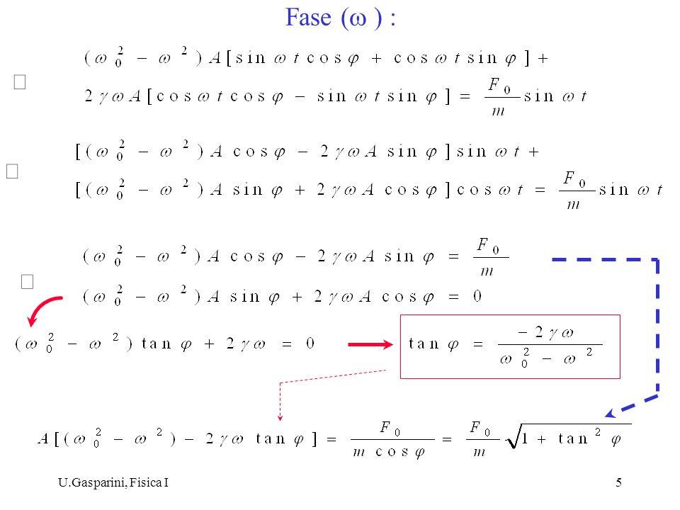 U.Gasparini, Fisica I6 : ampiezza e fase del moto a regime non dipendono dalle condizioni iniziali, che determinano le costanti A, B della parte transitoria del moto : x om (t) = A 0 e t + B 0 e t x P (t) Ampiezza A( ) :
