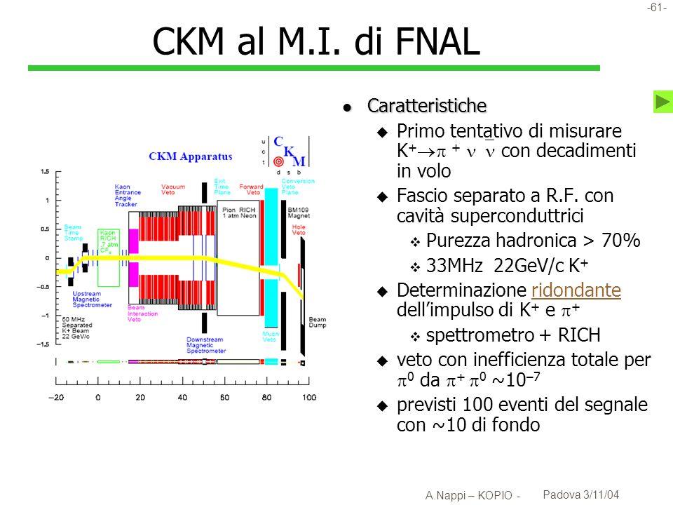 -62- A.Nappi – KOPIO - Padova 3/11/04 Aspetti della tecnica di CKM