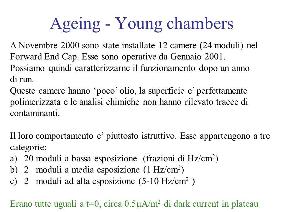 Ageing - Young chambers A Novembre 2000 sono state installate 12 camere (24 moduli) nel Forward End Cap. Esse sono operative da Gennaio 2001. Possiamo