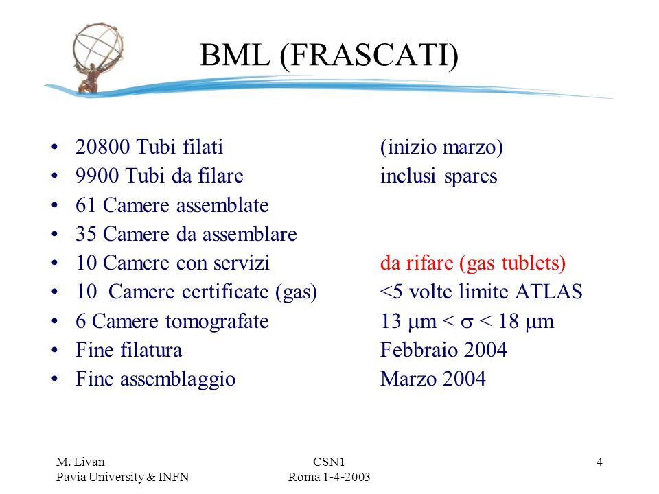 M. Livan Pavia University & INFN CSN1 Roma 1-4-2003 3 Stato della produzione 28/2/03