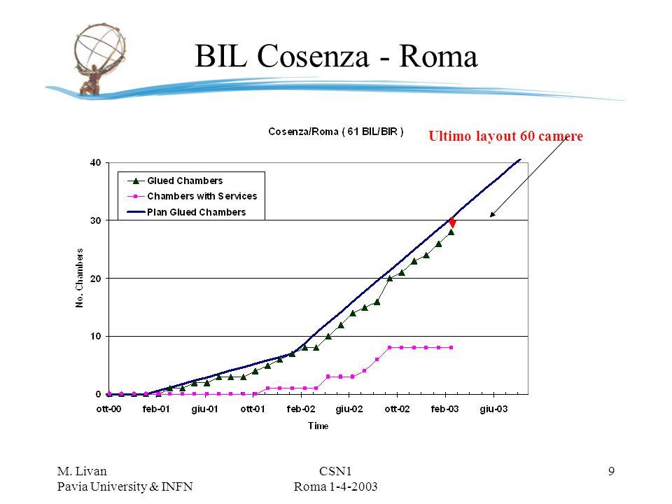 M. Livan Pavia University & INFN CSN1 Roma 1-4-2003 8 BIL Cosenza - Pavia Ultimo layout 56 camere