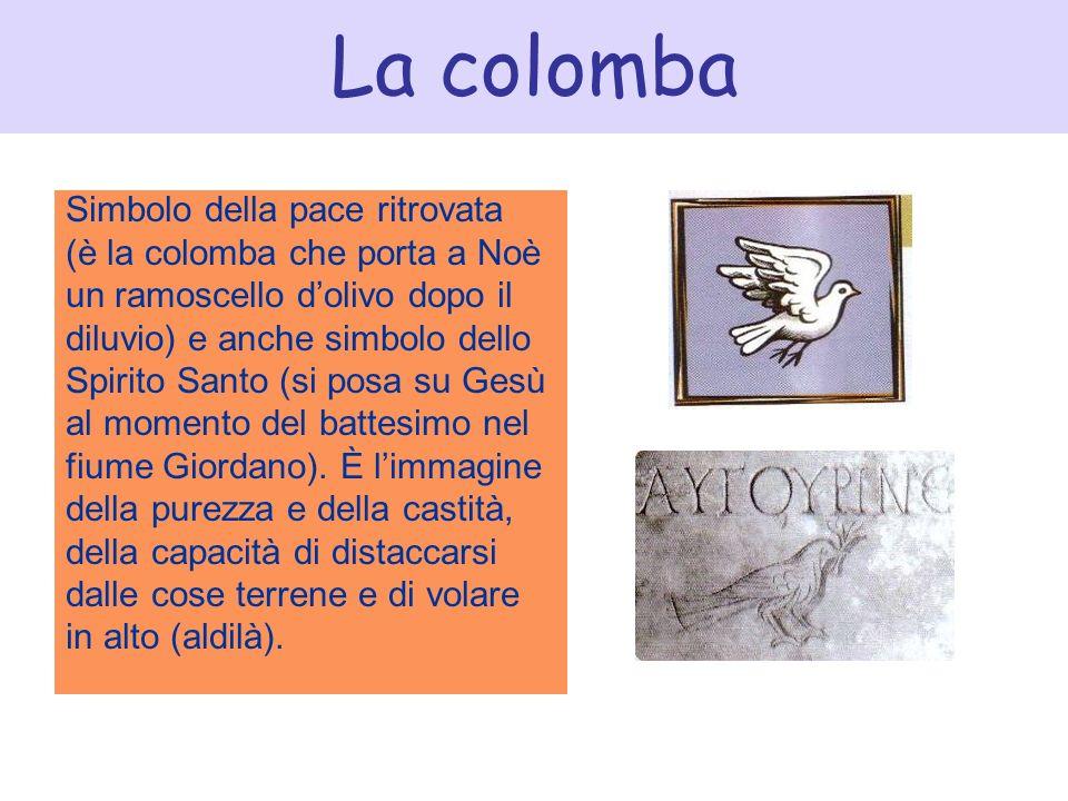 La colomba Simbolo della pace ritrovata (è la colomba che porta a Noè un ramoscello dolivo dopo il diluvio) e anche simbolo dello Spirito Santo (si po