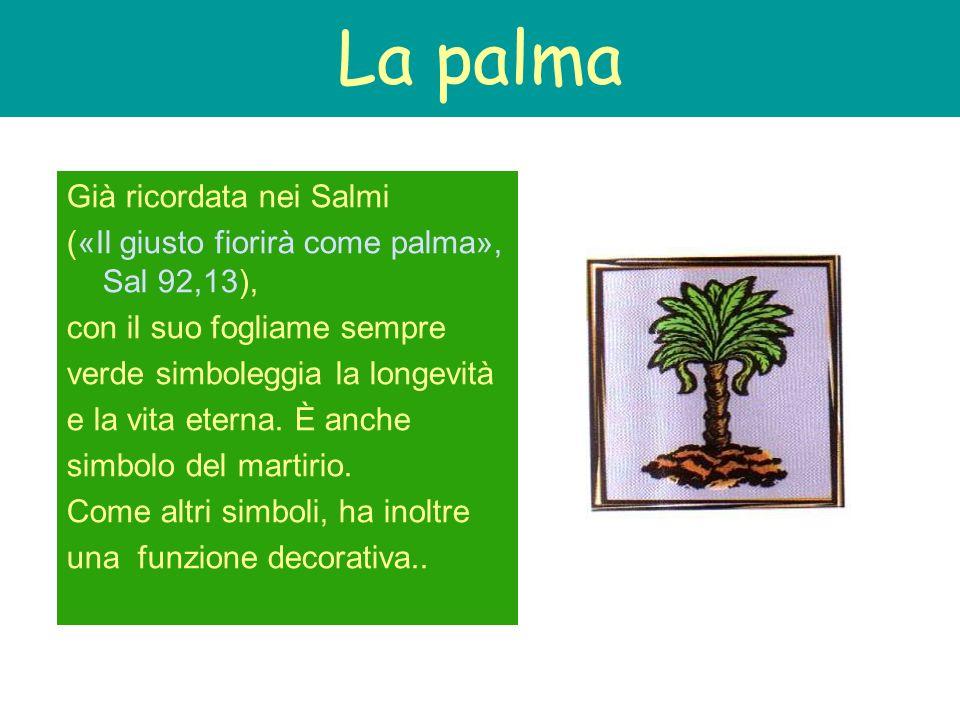 La palma Già ricordata nei Salmi («Il giusto fiorirà come palma», Sal 92,13), con il suo fogliame sempre verde simboleggia la longevità e la vita eter