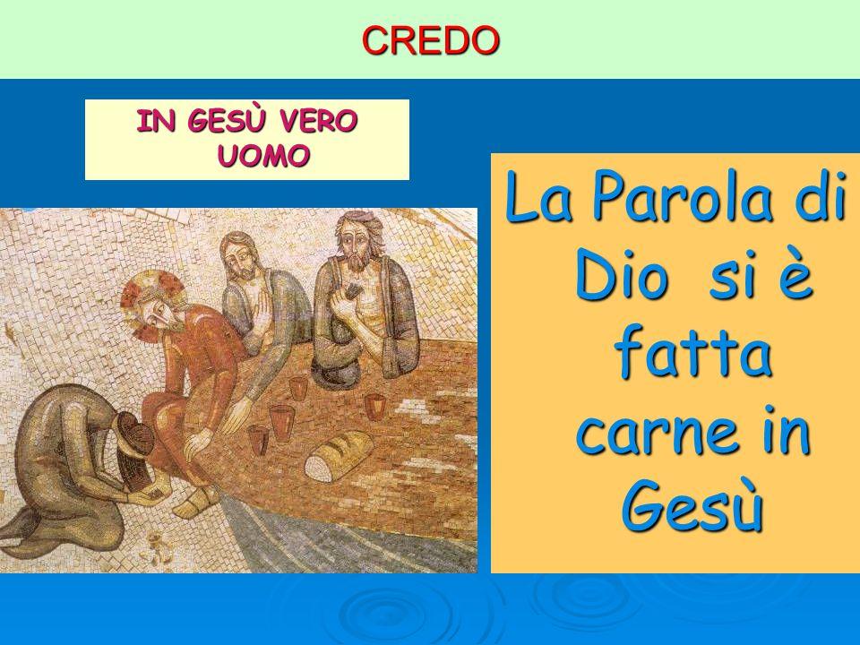 CREDO IN GESÙ VERO UOMO La Parola di Dio si è fatta carne in Gesù