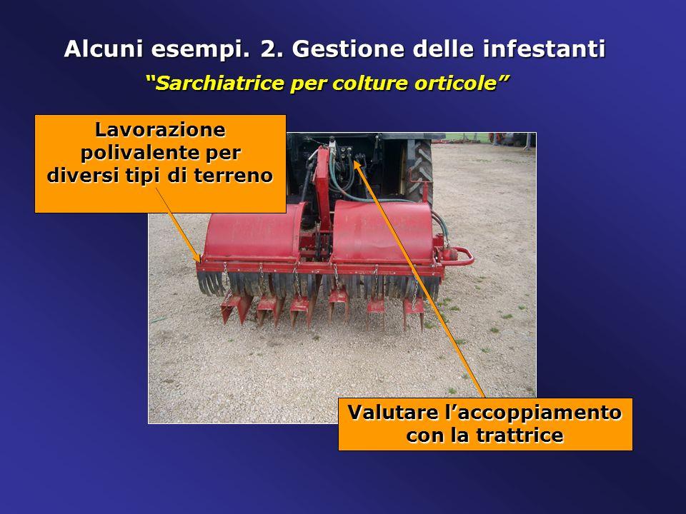 Alcuni esempi. 2. Gestione delle infestanti Lavorazione polivalente per diversi tipi di terreno Valutare laccoppiamento con la trattrice Sarchiatrice