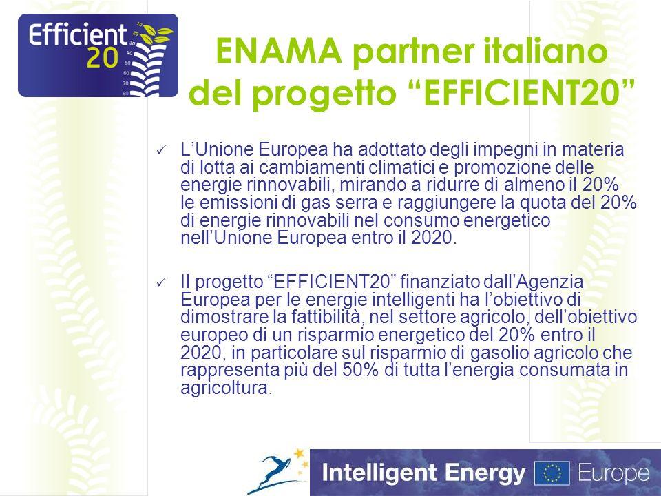 Effcient20: il progetto in cifre Il progetto è iniziato nel maggio 2010, ha una durata di 36 mesi, Il budget complessivo è di oltre 1,4 milioni di euro, coinvolge 12 Istituzioni di 9 diversi paesi europei (Italia, Francia, Gran Bretagna, Germania, Spagna, Austria, Belgio, Polonia, Slovenia), 5 dei 12 partner sono Membri del Network ENTAM (European Network for Testing Agricultural Machines).