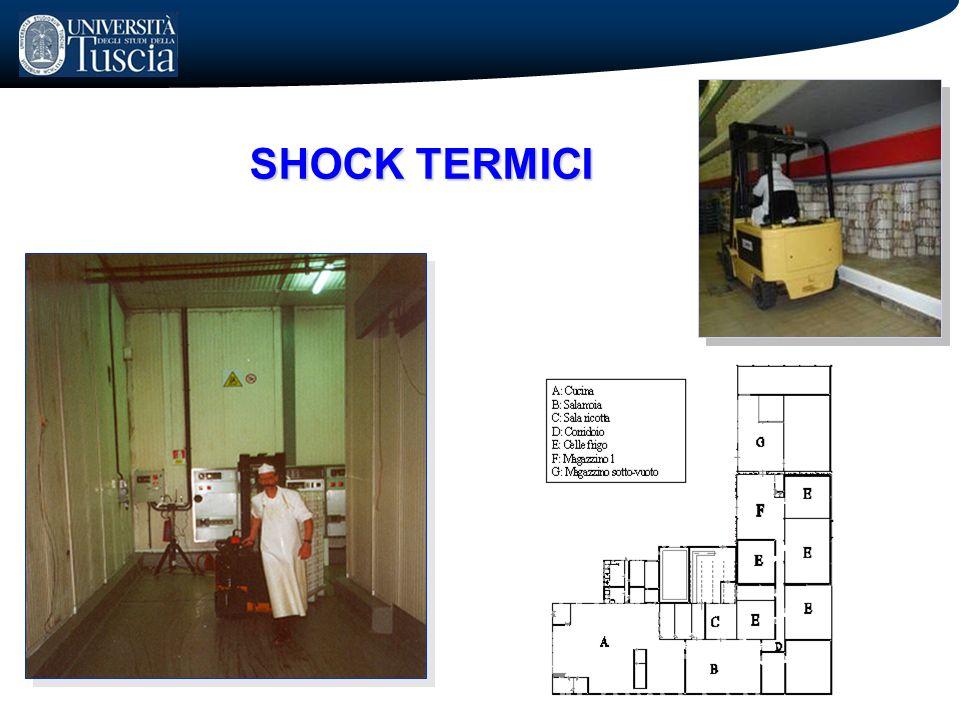 SHOCK TERMICI
