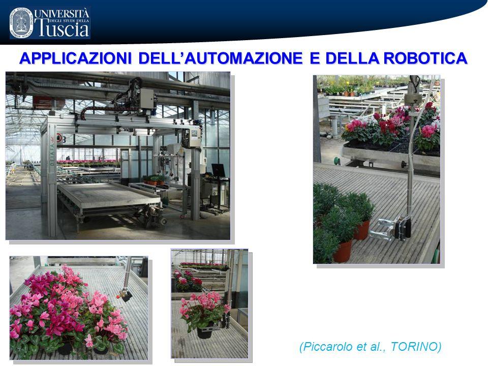 APPLICAZIONI DELLAUTOMAZIONE E DELLA ROBOTICA (Piccarolo et al., TORINO)