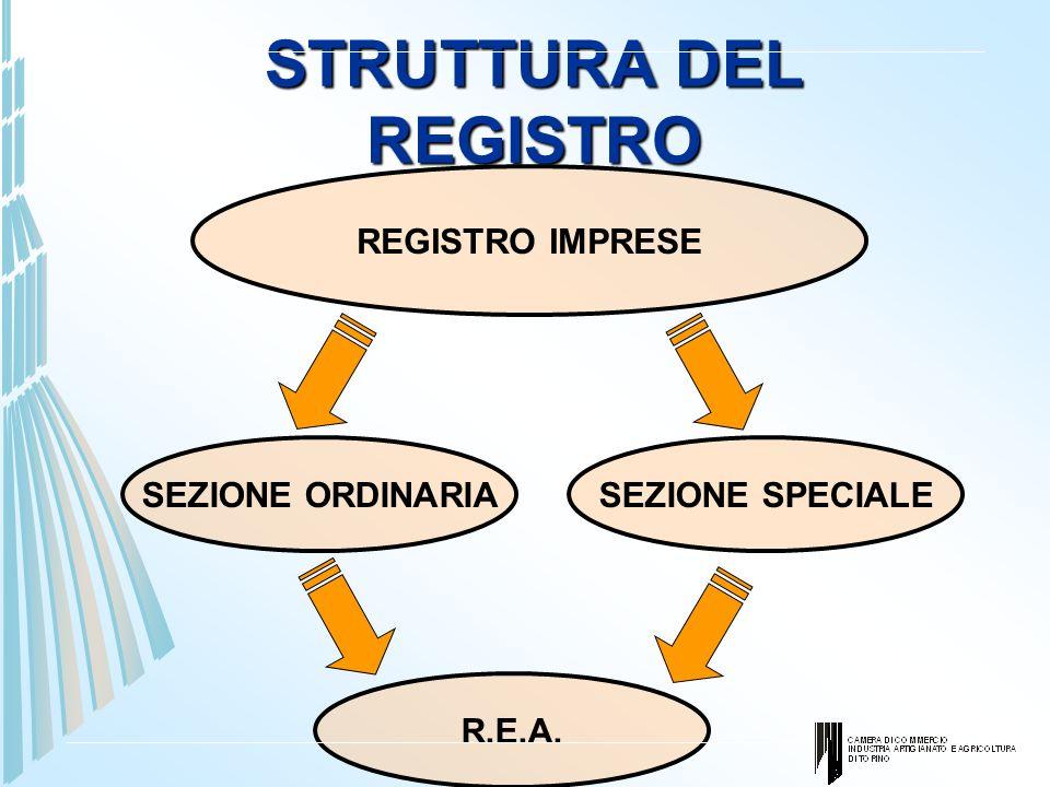 STRUTTURA DEL REGISTRO REGISTRO IMPRESE SEZIONE ORDINARIASEZIONE SPECIALE R.E.A.
