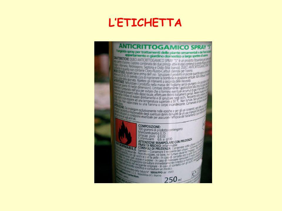 LETICHETTA