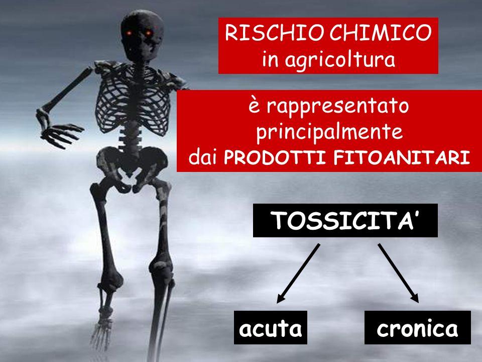 TOSSICITA cronicaacuta è rappresentato principalmente dai PRODOTTI FITOANITARI RISCHIO CHIMICO in agricoltura