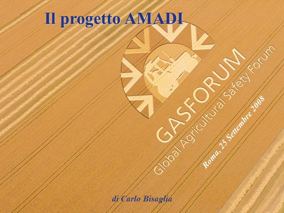 Il progetto AMADI di Carlo Bisaglia Roma, 25 Settembre 2008