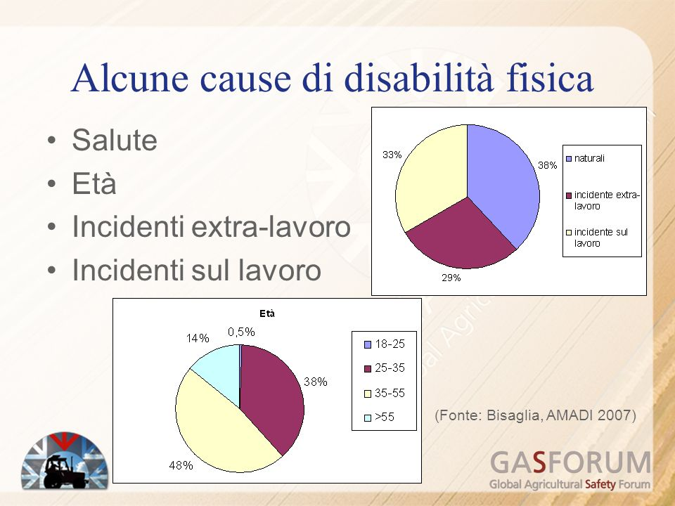 Alcune cause di disabilità fisica Salute Età Incidenti extra-lavoro Incidenti sul lavoro (Fonte: Bisaglia, AMADI 2007)