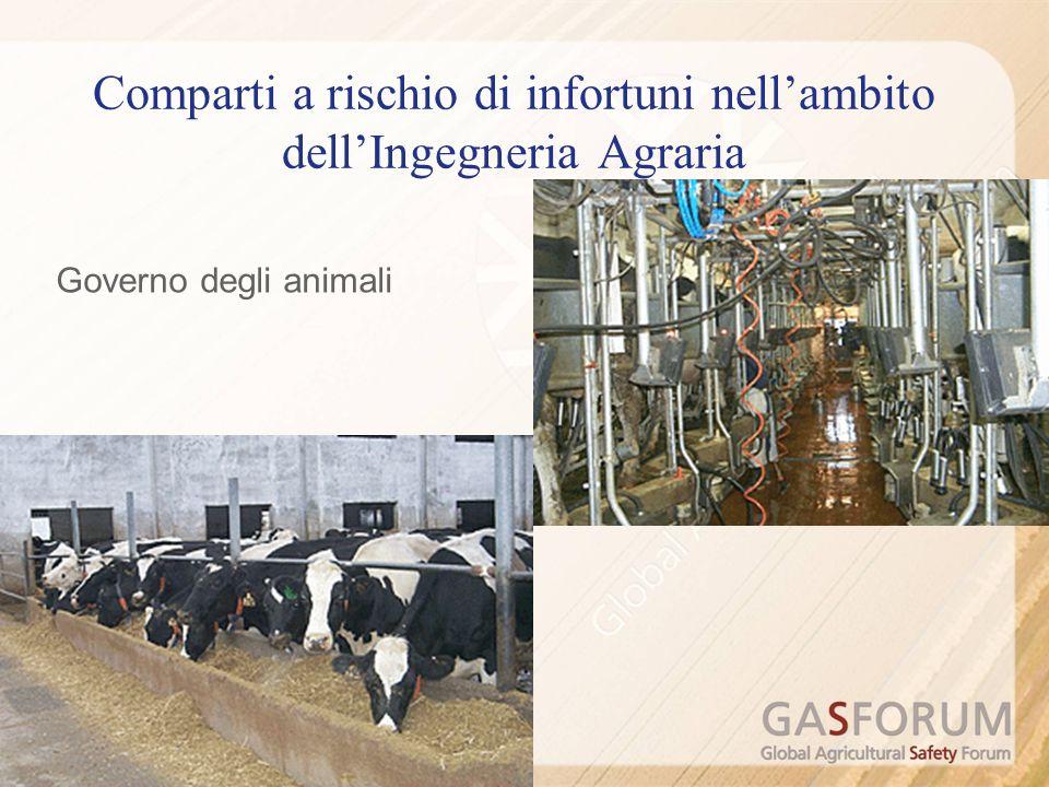 Governo degli animali Comparti a rischio di infortuni nellambito dellIngegneria Agraria