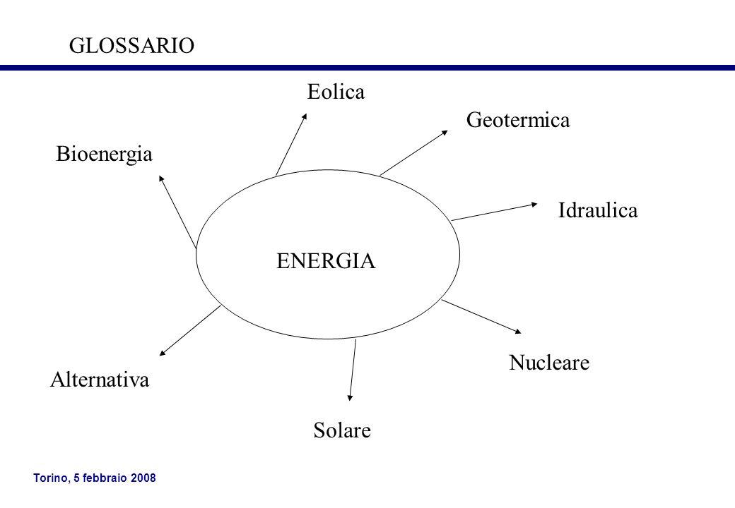 Torino, 5 febbraio 2008 ENERGIA Eolica Idraulica Geotermica Nucleare Solare Alternativa Bioenergia GLOSSARIO