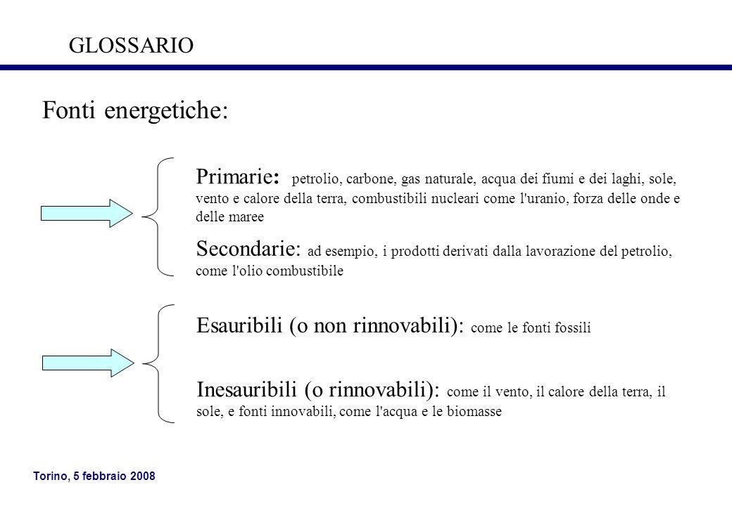 Torino, 5 febbraio 2008 Fonti energetiche: Primarie: petrolio, carbone, gas naturale, acqua dei fiumi e dei laghi, sole, vento e calore della terra, c