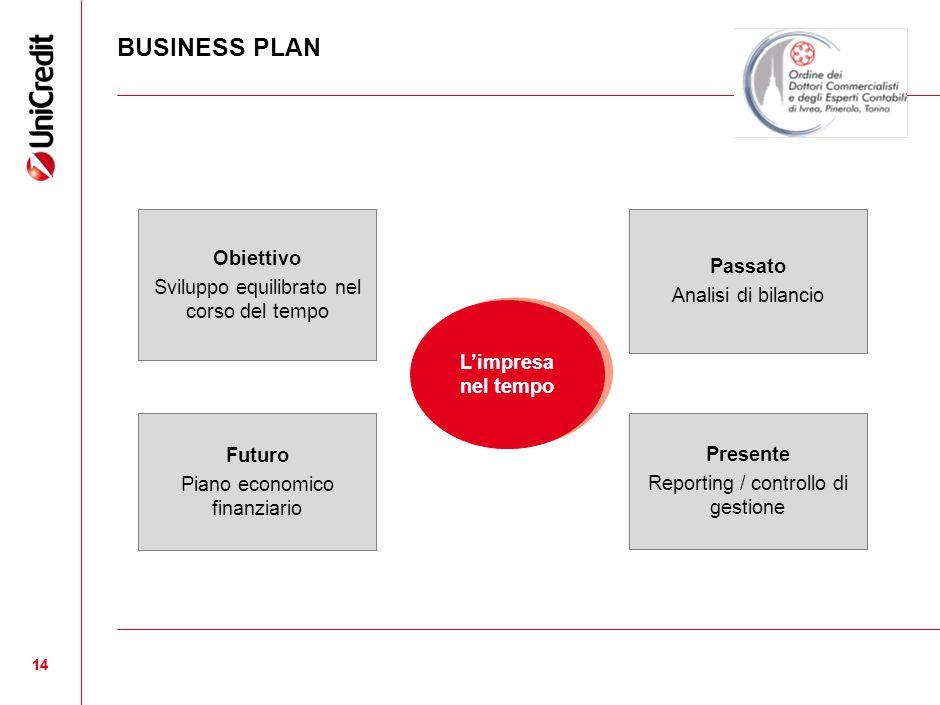 BUSINESS PLAN 14 Limpresa nel tempo Obiettivo Sviluppo equilibrato nel corso del tempo Futuro Piano economico finanziario Presente Reporting / control