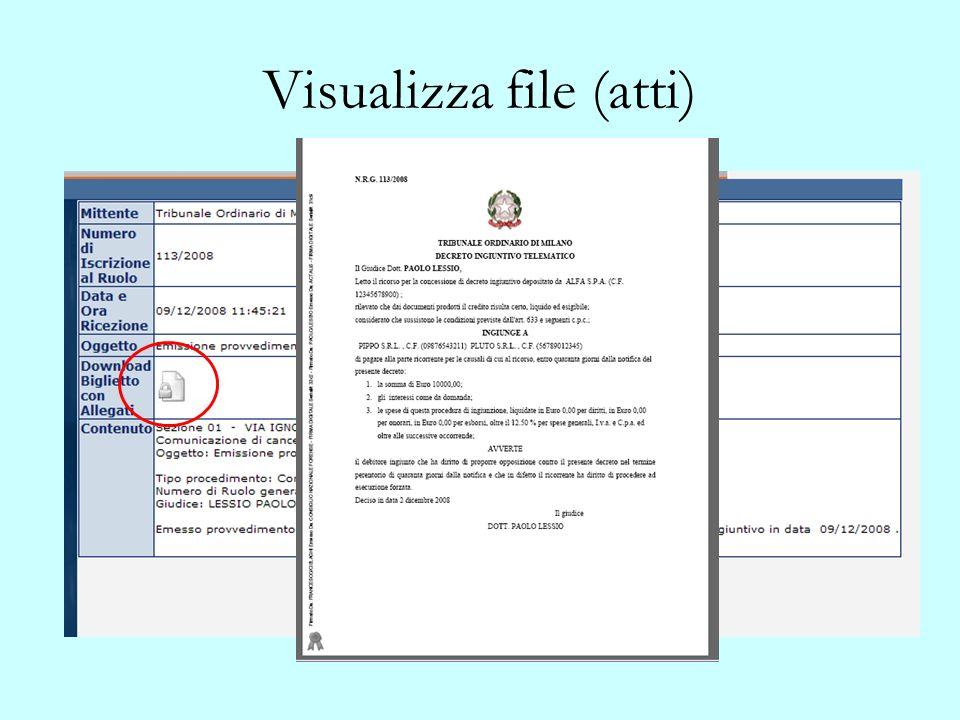 Visualizza file (atti)