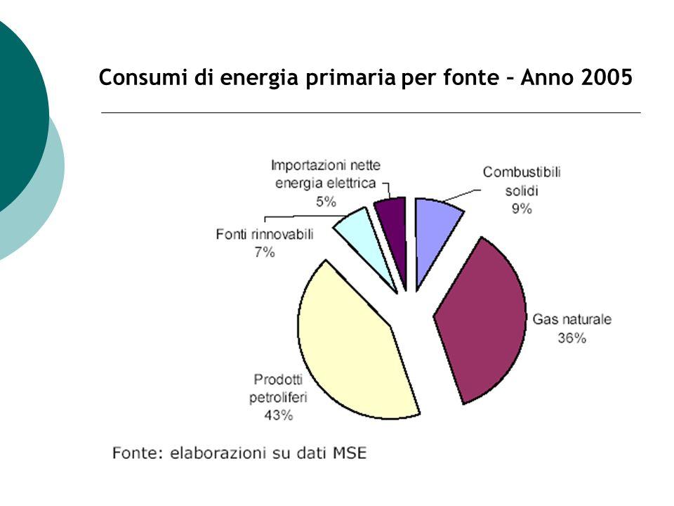 Consumi di energia primaria per fonte – Anno 2005