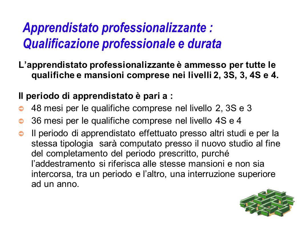 Apprendistato professionalizzante : Qualificazione professionale e durata Lapprendistato professionalizzante è ammesso per tutte le qualifiche e mansi
