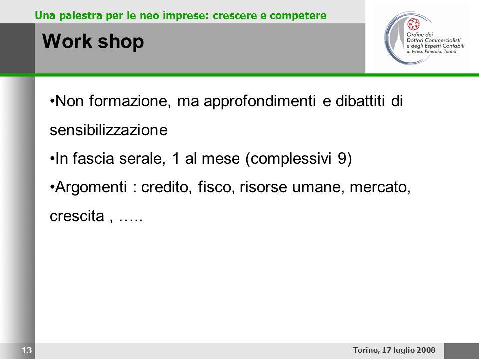 Una palestra per le neo imprese: crescere e competere Work shop Torino, 17 luglio 2008 13 Non formazione, ma approfondimenti e dibattiti di sensibiliz