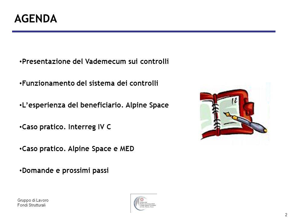 2 AGENDA Presentazione del Vademecum sui controlli Funzionamento del sistema dei controlli Lesperienza del beneficiario. Alpine Space Caso pratico. In