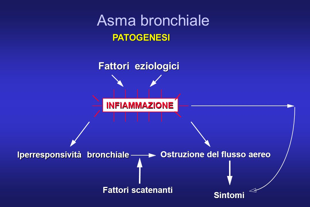 INFIAMMAZIONE Fattori eziologici Iperresponsività bronchiale Fattori scatenanti Sintomi Ostruzione del flusso aereo PATOGENESI Asma bronchiale