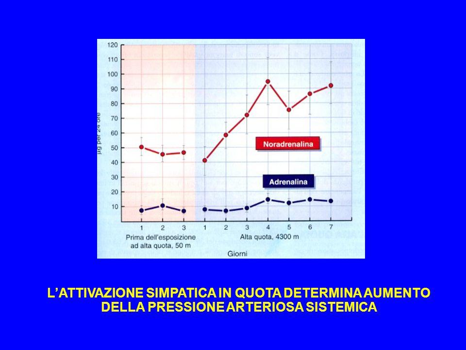 LATTIVAZIONE SIMPATICA IN QUOTA DETERMINA AUMENTO DELLA PRESSIONE ARTERIOSA SISTEMICA