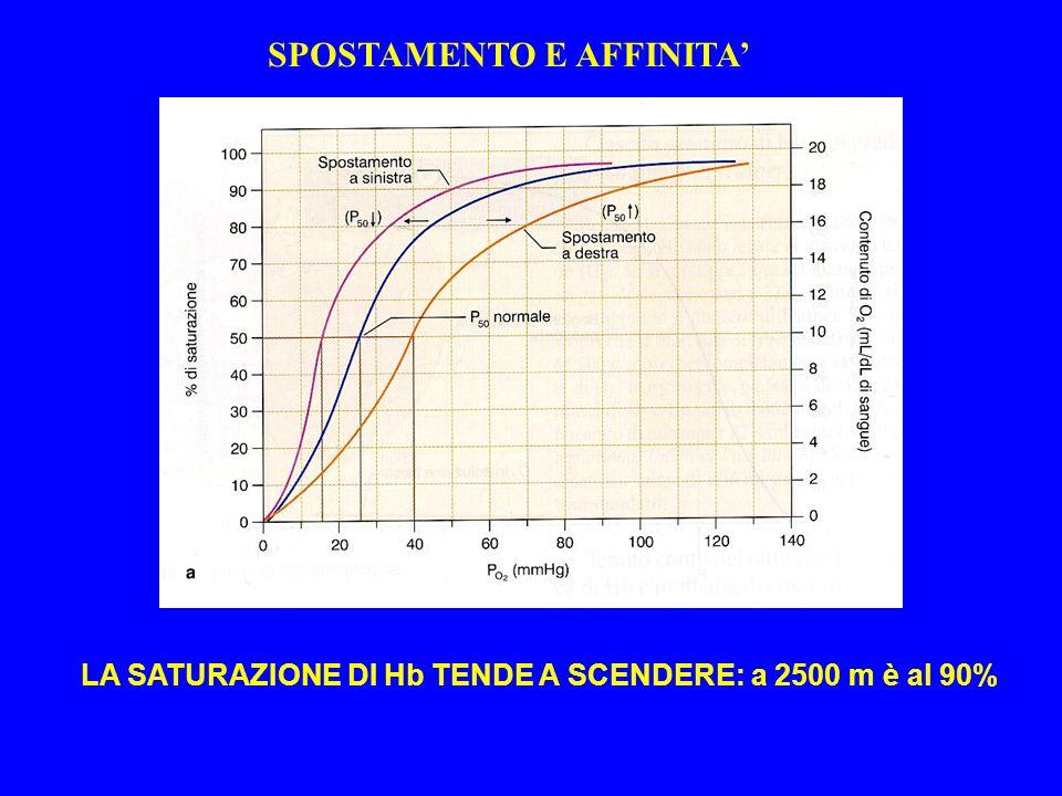 LA SATURAZIONE DI Hb TENDE A SCENDERE: a 2500 m è al 90% SPOSTAMENTO E AFFINITA