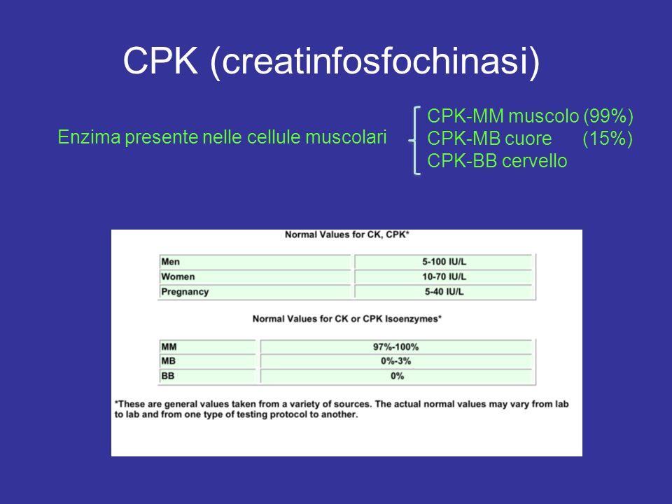 CPK (creatinfosfochinasi) Enzima presente nelle cellule muscolari CPK-MM muscolo (99%) CPK-MB cuore (15%) CPK-BB cervello