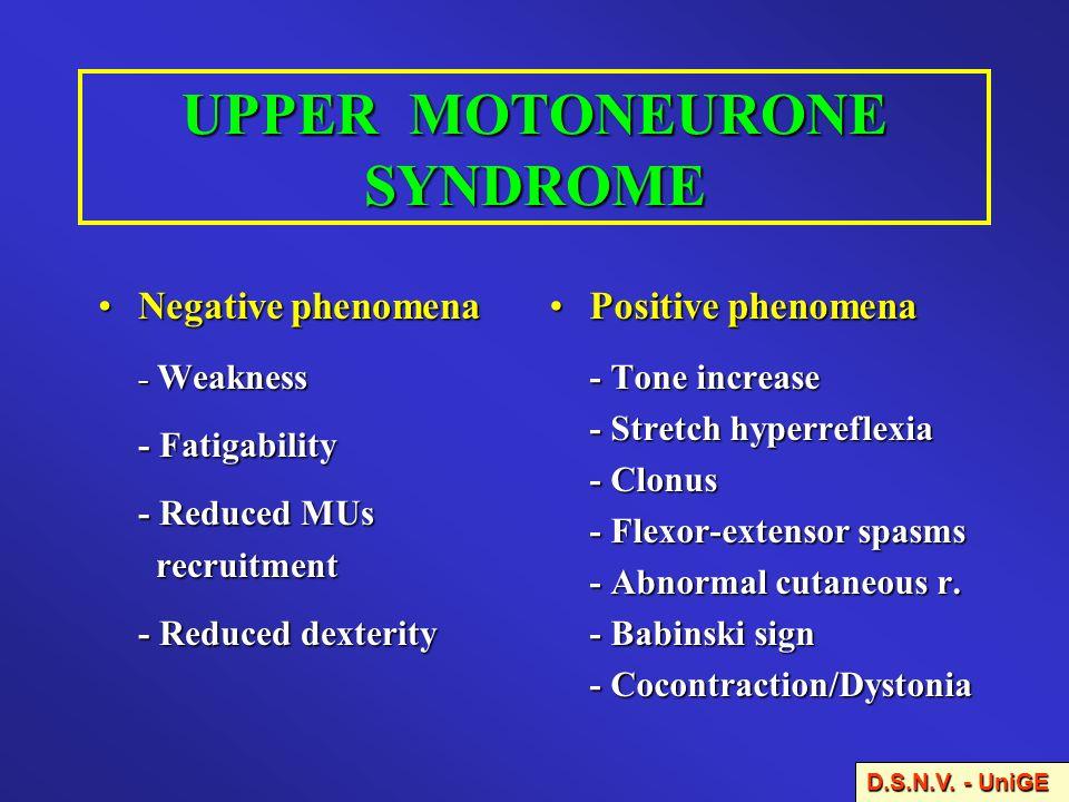 UPPER MOTONEURONE SYNDROME Negative phenomenaNegative phenomena - Weakness - Fatigability - Reduced MUs recruitment recruitment - Reduced dexterity D.