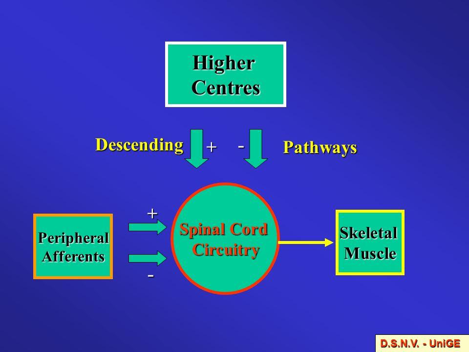Cochrane Database Syst.Rev.