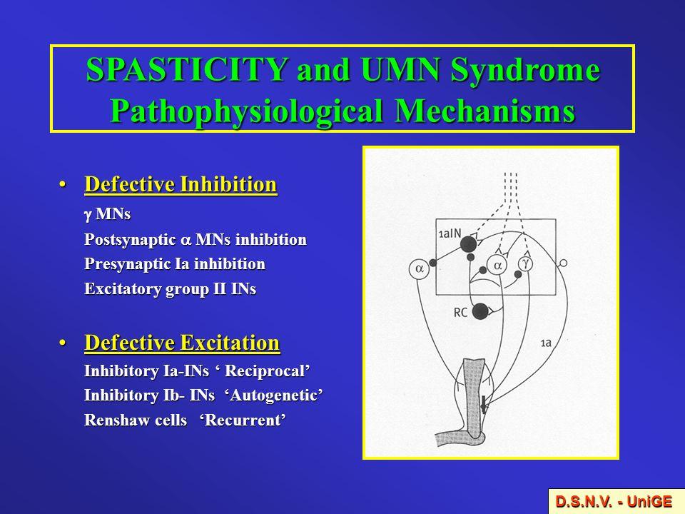 SPASTICITY and UMN Syndrome Pathophysiological Mechanisms Defective InhibitionDefective Inhibition MNs MNs Postsynaptic MNs inhibition Presynaptic Ia