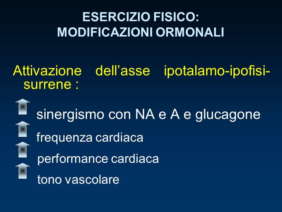 ESERCIZIO FISICO: MODIFICAZIONI ORMONALI Attivazione dellasse ipotalamo-ipofisi- surrene : sinergismo con NA e A e glucagone frequenza cardiaca perfor