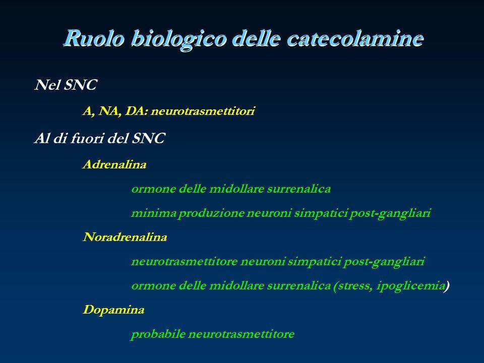 Nel SNC A, NA, DA: neurotrasmettitori Al di fuori del SNC Adrenalina ormone delle midollare surrenalica minima produzione neuroni simpatici post-gangl