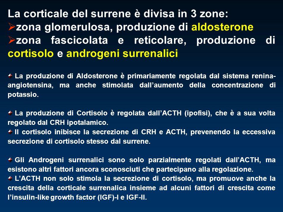 La corticale del surrene è divisa in 3 zone: zona glomerulosa, produzione di aldosterone zona fascicolata e reticolare, produzione di cortisolo e andr