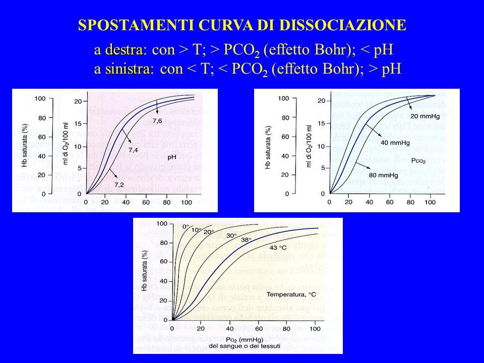 SPOSTAMENTI CURVA DI DISSOCIAZIONE destra a destra: con > T; > PCO 2 (effetto Bohr); < pH sinistra a sinistra: con pH