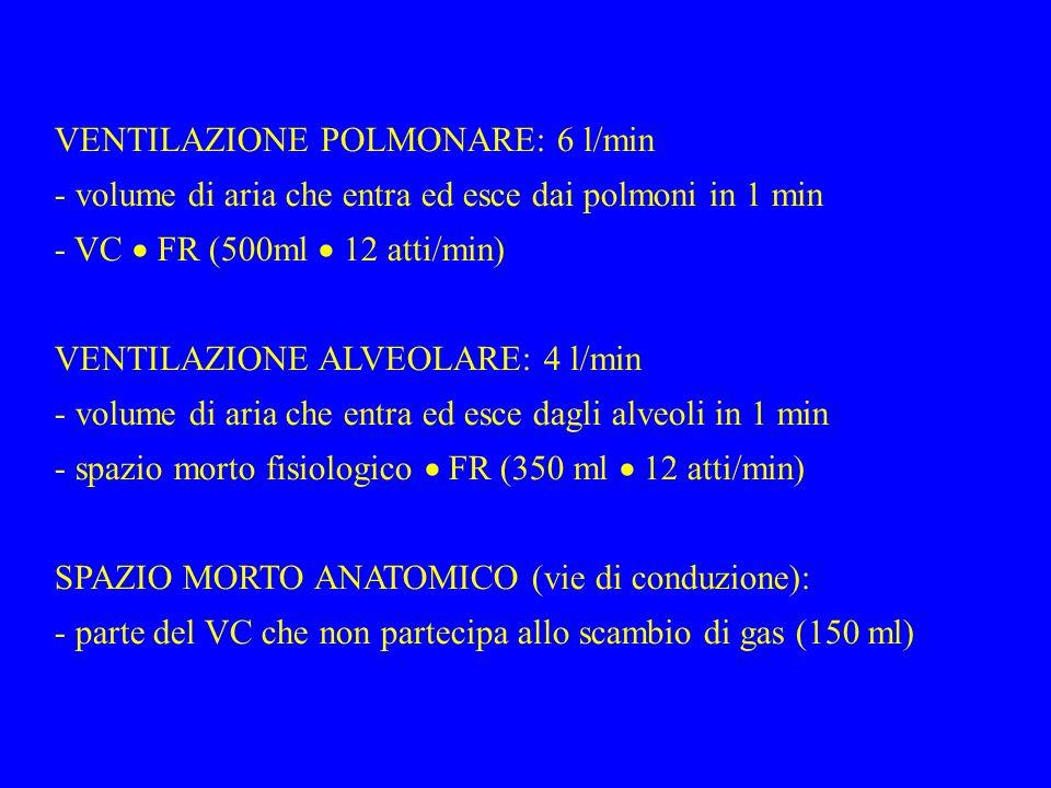 VENTILAZIONE POLMONARE: 6 l/min - volume di aria che entra ed esce dai polmoni in 1 min - VC FR (500ml 12 atti/min) VENTILAZIONE ALVEOLARE: 4 l/min - volume di aria che entra ed esce dagli alveoli in 1 min - spazio morto fisiologico FR (350 ml 12 atti/min) SPAZIO MORTO ANATOMICO (vie di conduzione): - parte del VC che non partecipa allo scambio di gas (150 ml)