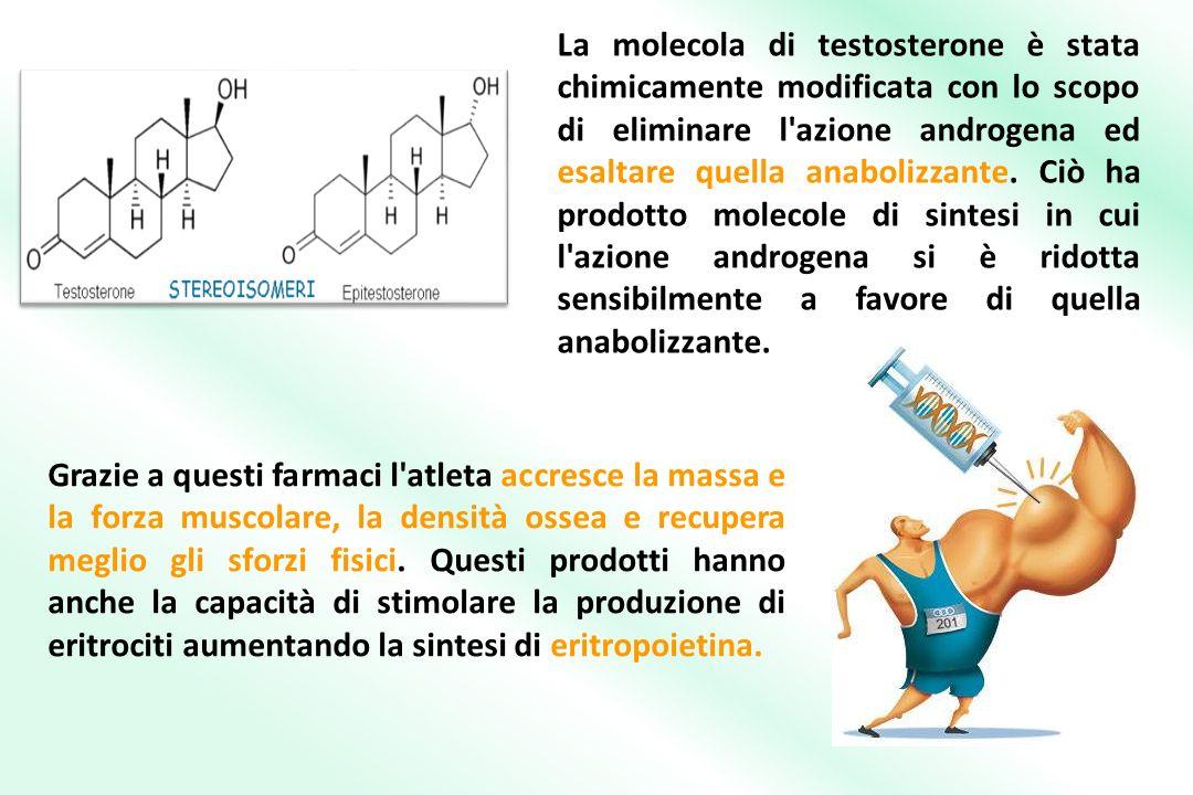La molecola di testosterone è stata chimicamente modificata con lo scopo di eliminare l azione androgena ed esaltare quella anabolizzante.