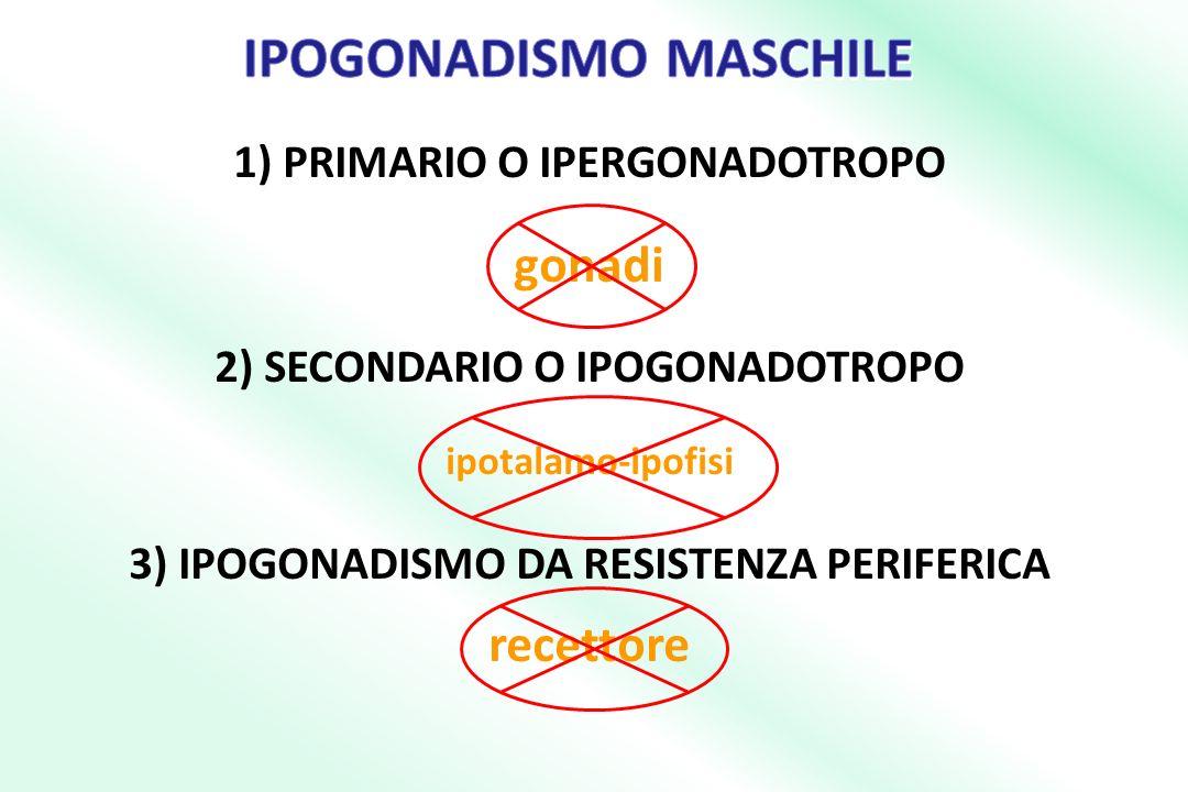 1) PRIMARIO O IPERGONADOTROPO gonadi 2) SECONDARIO O IPOGONADOTROPO ipotalamo-ipofisi 3) IPOGONADISMO DA RESISTENZA PERIFERICA recettore