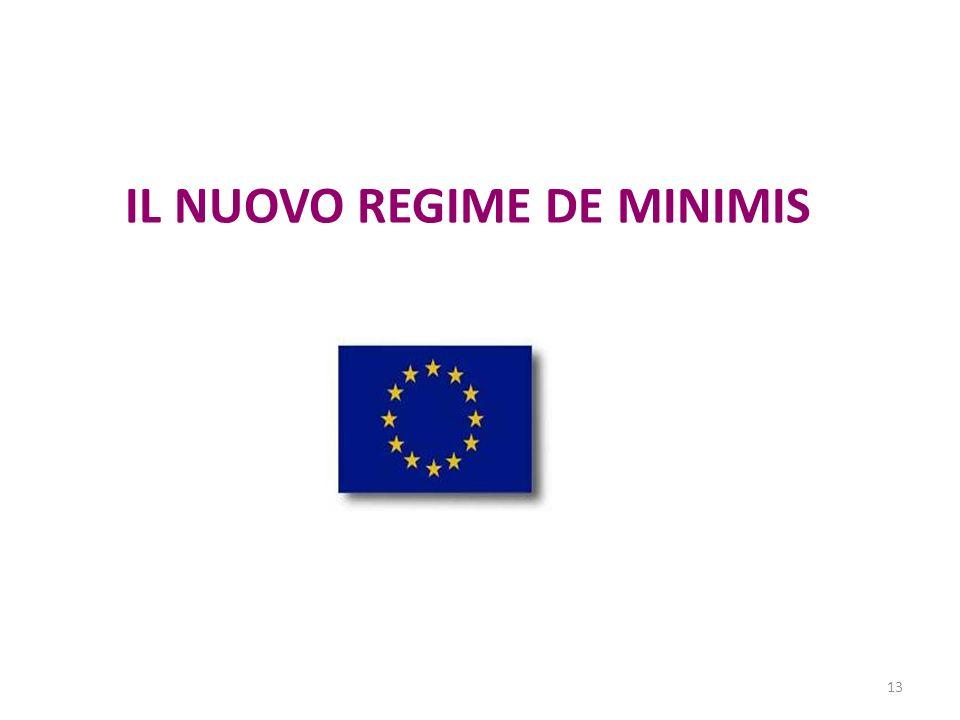 13 IL NUOVO REGIME DE MINIMIS