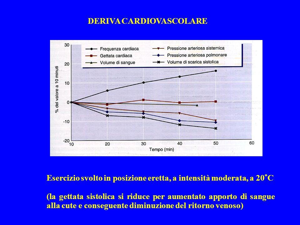 Esercizio svolto in posizione eretta, a intensità moderata, a 20°C (la gettata sistolica si riduce per aumentato apporto di sangue alla cute e consegu