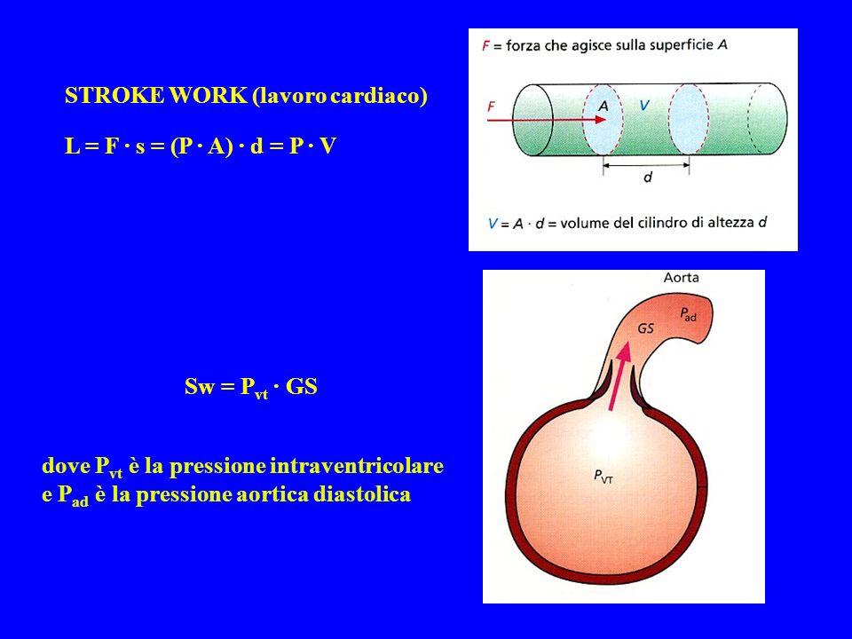 L = F · s = (P · A) · d = P · V Sw = P vt · GS dove P vt è la pressione intraventricolare e P ad è la pressione aortica diastolica