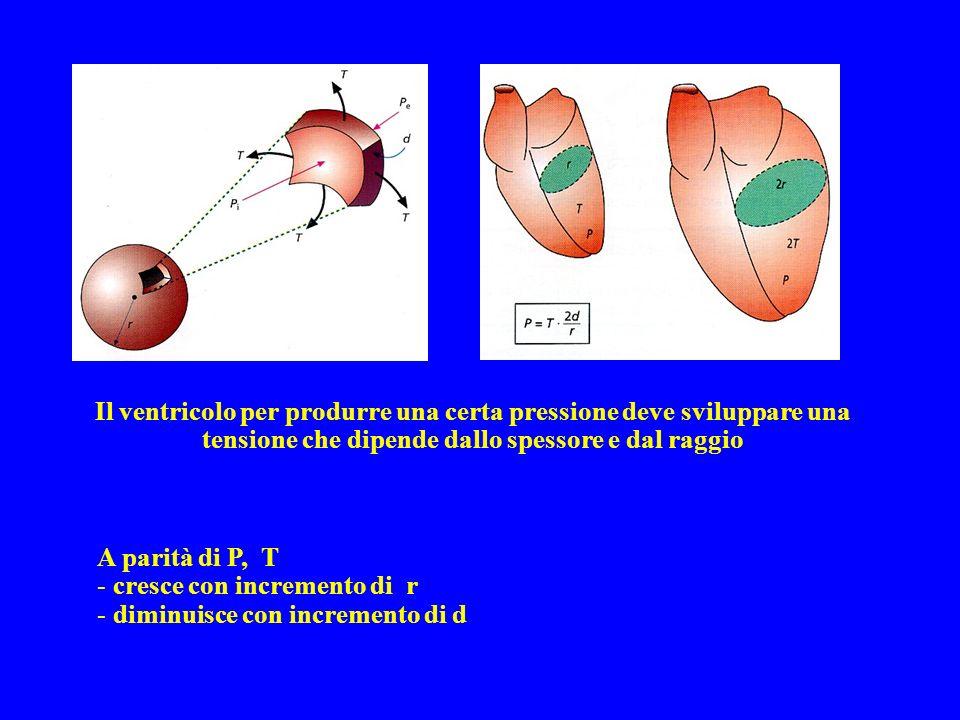 Il ventricolo per produrre una certa pressione deve sviluppare una tensione che dipende dallo spessore e dal raggio A parità di P, T - cresce con incr