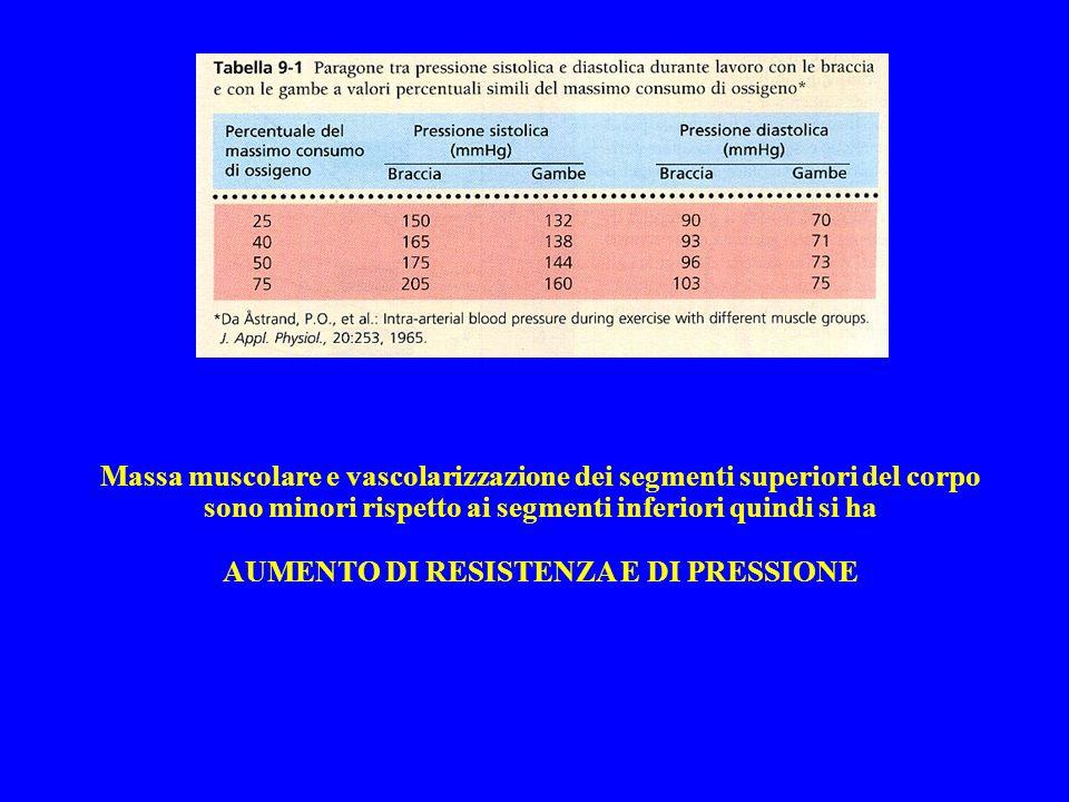 Massa muscolare e vascolarizzazione dei segmenti superiori del corpo sono minori rispetto ai segmenti inferiori quindi si ha AUMENTO DI RESISTENZA E D