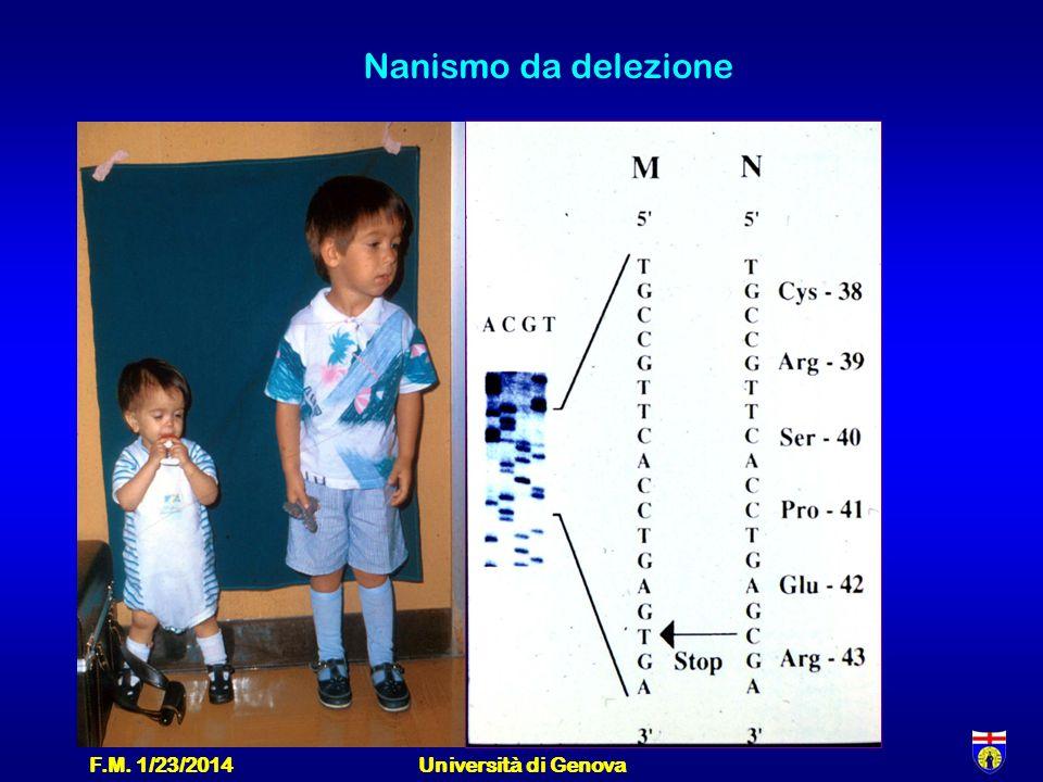F.M. 1/23/2014Università di Genova Nanismo da delezione