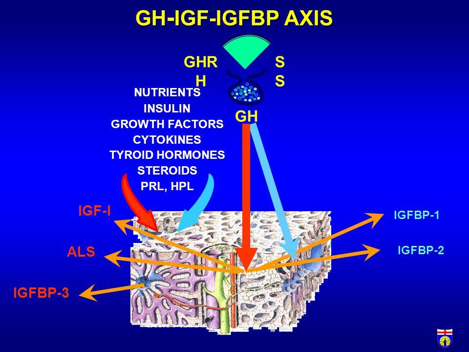 GH - IGF-IGFBP AXIS IGFBP-1 ALS IGFBP-3 IGF-I IGFBP-2 GHR HS GH NUTRIENTS INSULIN GROWTH FACTORS CYTOKINES TYROID HORMONES STEROIDS PRL, HPL